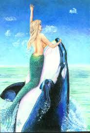 mermaid vs whale