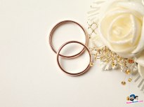 wedding_rings_01