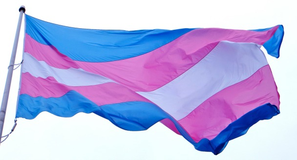 pictured: trans flag which features blue, pink, and white stripes